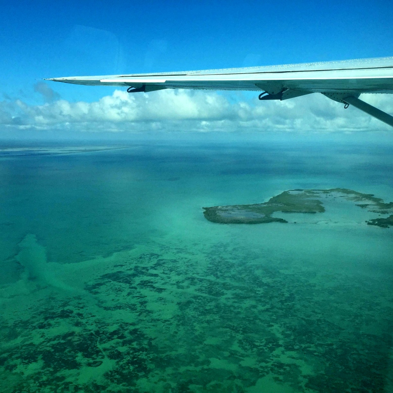 Paradise from above